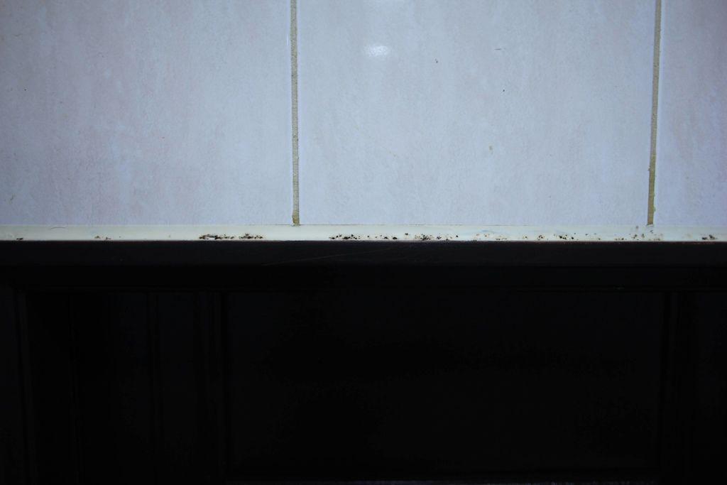 浴室矽利康的除霉清潔10-1.JPG
