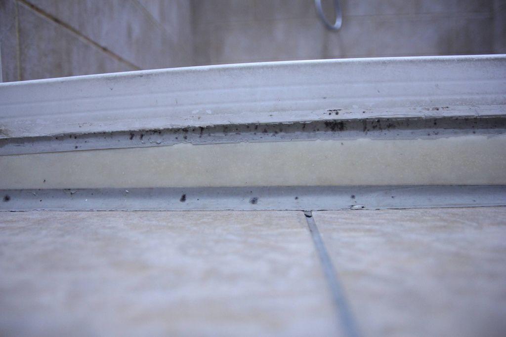 浴室矽利康的除霉清潔11.JPG