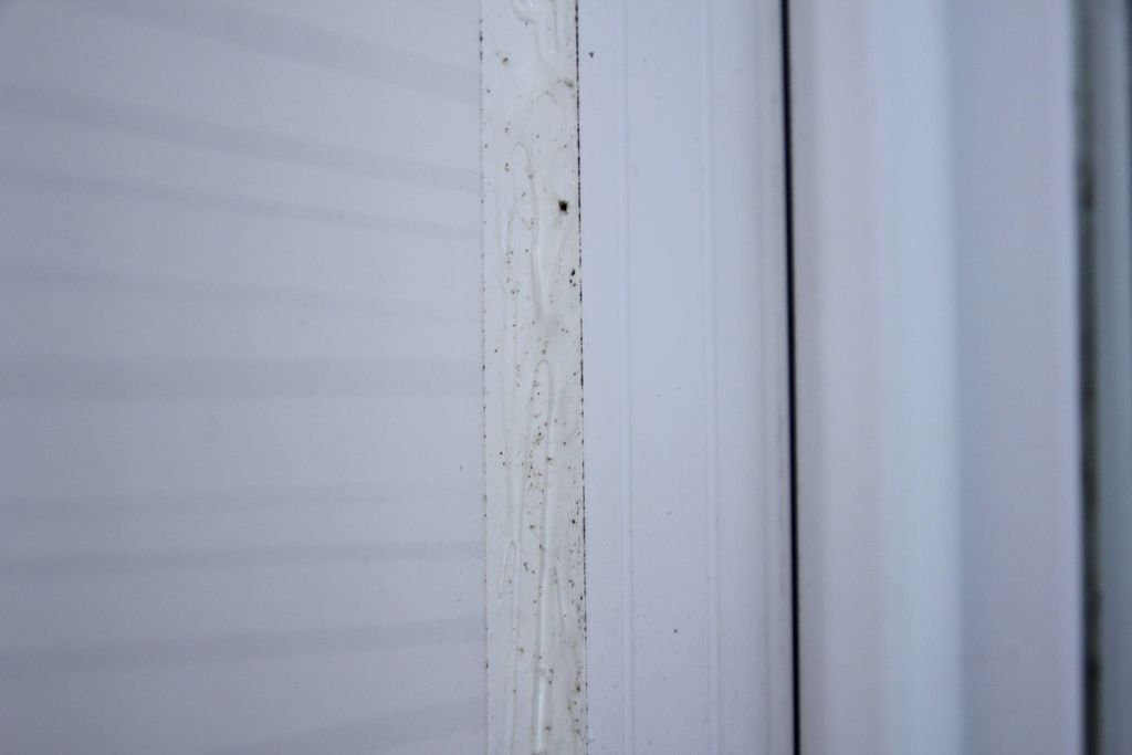 浴室矽利康的除霉清潔14.JPG