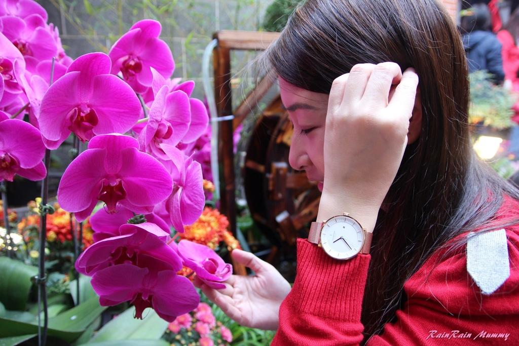 Nordgreen手錶8.JPG