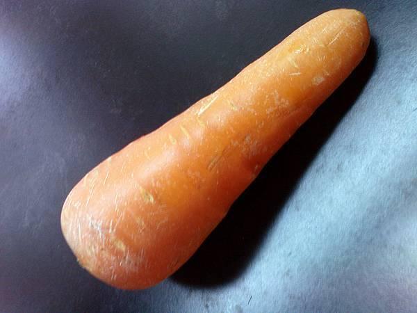 黃色胡蘿蔔對照組.JPG