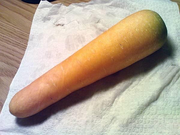 黃色胡蘿蔔 (3).JPG