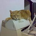 高處的印表機是我的王座
