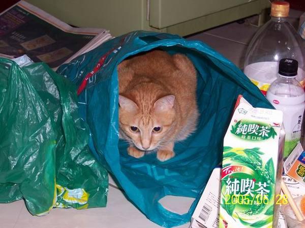 我愛塑膠袋