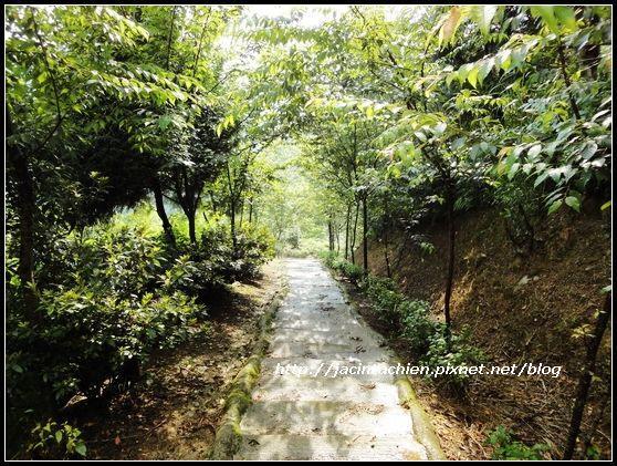 花岩山林45-f.jpg