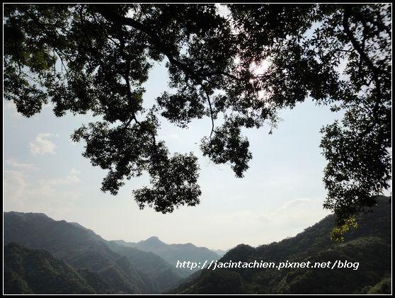 花岩山林47-f.jpg