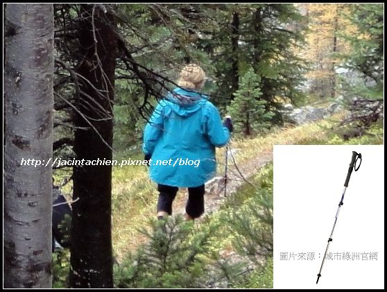 Canada_登山杖_multi-f