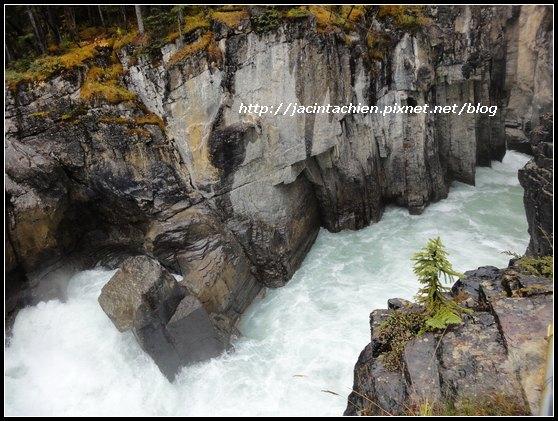 Canada_07557-f.jpg