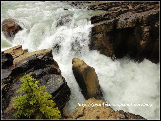 Canada_07555-f.jpg