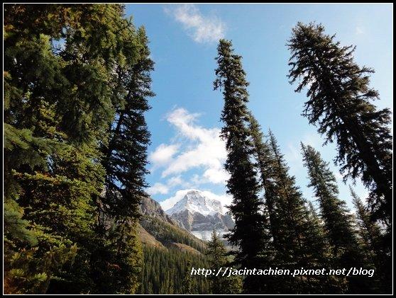 Canada_07935-f.jpg