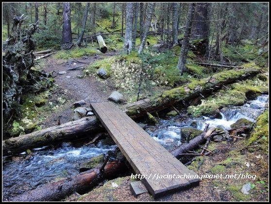 Canada_07960-f.jpg