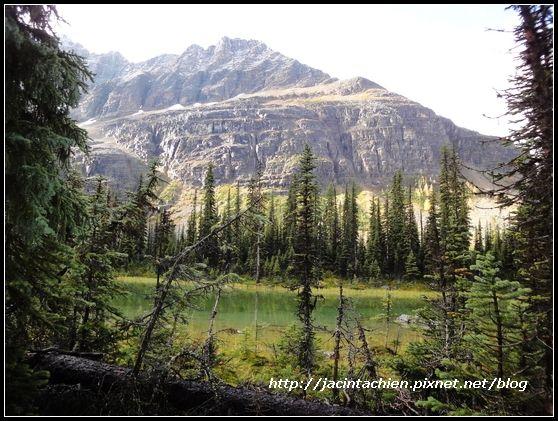 Canada_07965-f.jpg