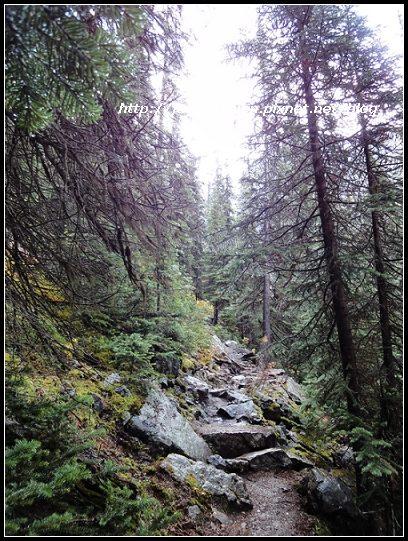 Canada_07973-f.jpg