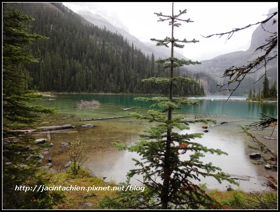Canada_08296-f.jpg