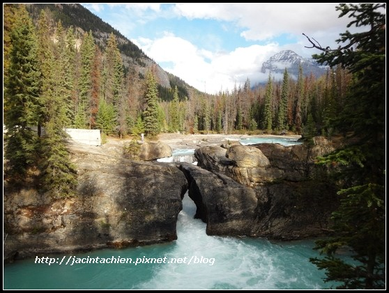 Canada_08878-f.jpg