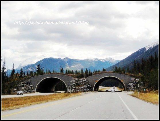 Canada_00676-f.jpg