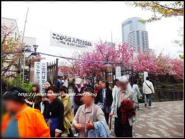 日本大阪1028-f