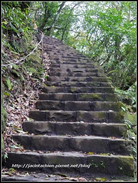陽明山步道018