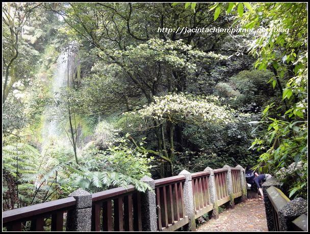 陽明山步道052