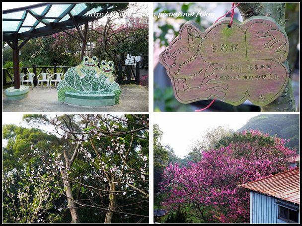 白石湖吊橋_39-m