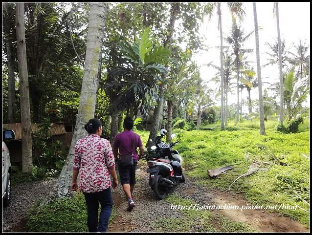 Bali_04674.jpg