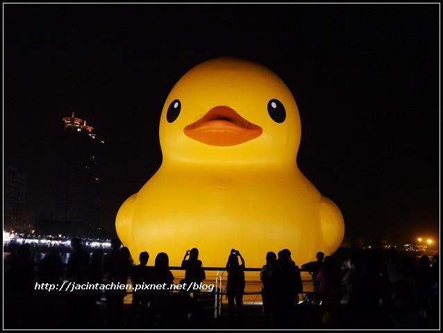 duck0416