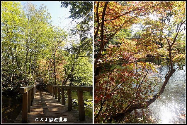 北海道_05647-m.jpg