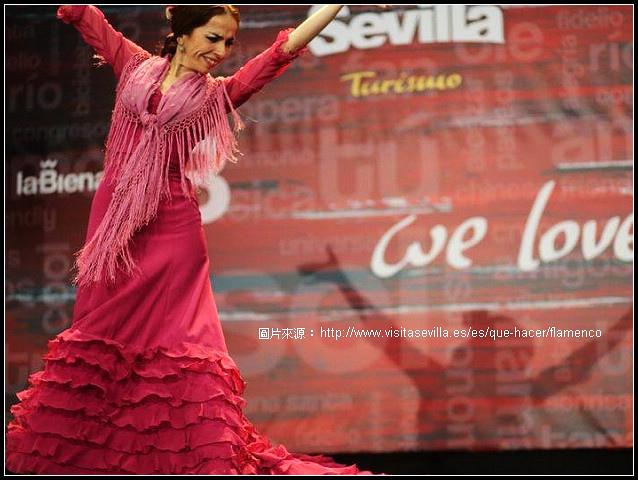 flamenco_4.jpg
