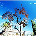 西班牙_010766.jpg
