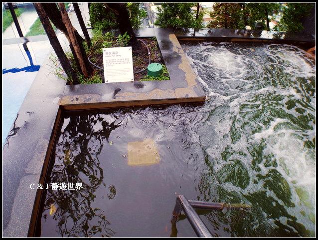 煙波大飯店040687.jpg