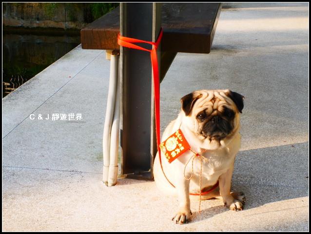 新竹二泉湖畔_020294.jpg