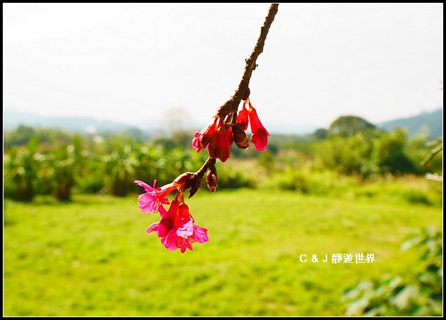 新竹二泉湖畔_020434.jpg
