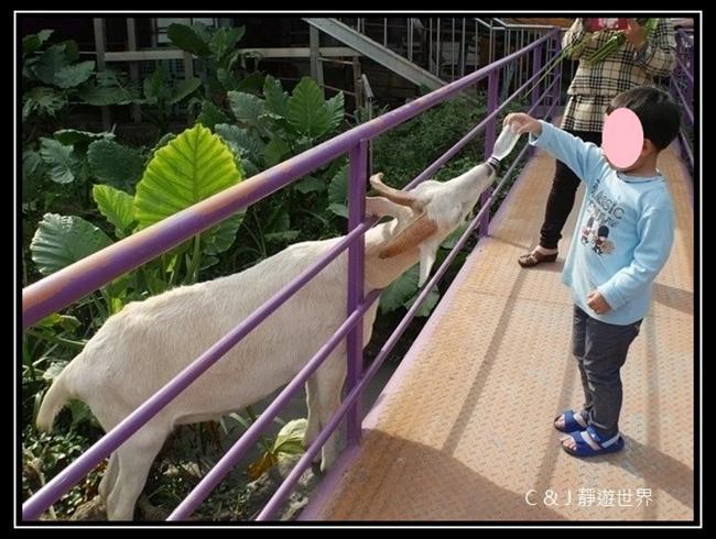 宜農牧場 P1040581.JPG