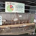 宜農牧場 P1040605.JPG