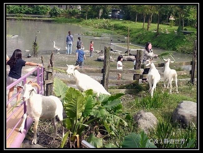 宜農牧場 P1300581.JPG