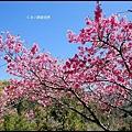武陵農場60054.jpg