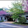 武陵農場60389.jpg