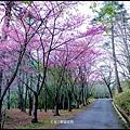武陵農場50759.jpg