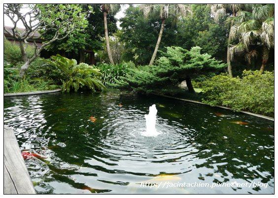 壹等賞觀景茶園-魚池