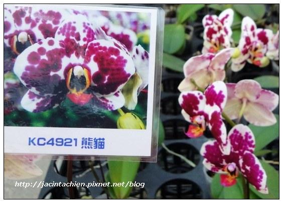 金車員山蘭花園12-f.jpg