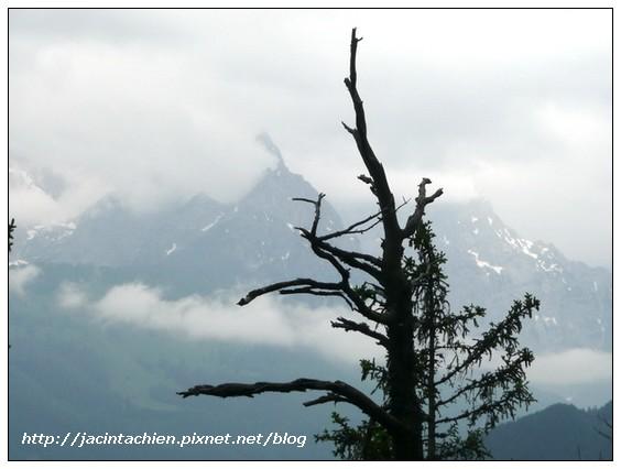 20090523奧地利之旅1411-f.jpg