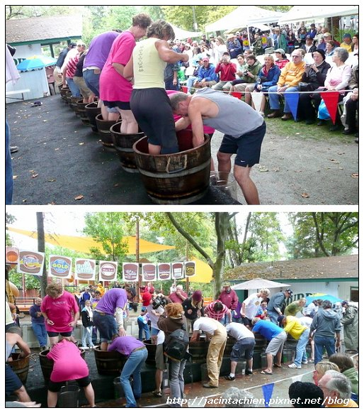 grape stomp-2