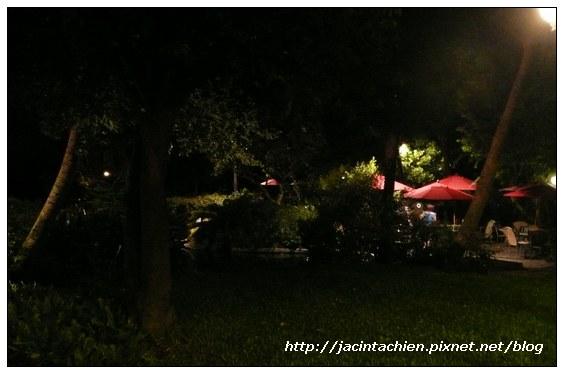 壹等賞觀景茶園-夜景