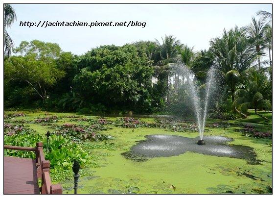 2010 Phuket -P1150132-f.jpg