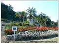 春天農場-花園-s