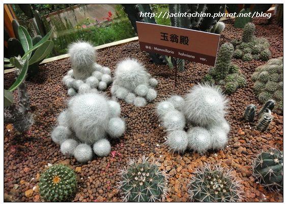 台北花博-01249-f.jpg