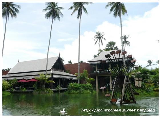 2010 Phuket -P1140164-f.jpg