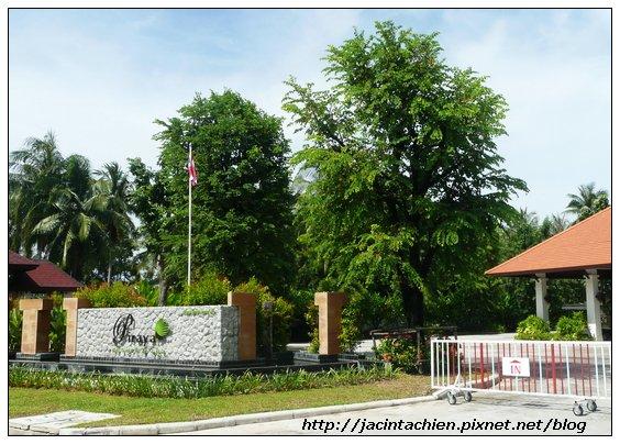 2010 Phuket -P1140672-f.jpg