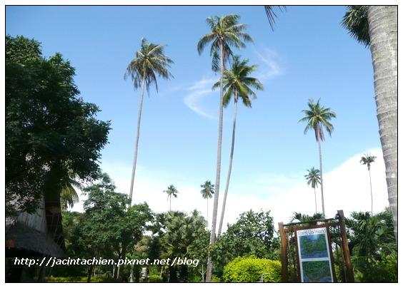 2010 Phuket -P1120990-f.jpg