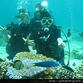 萊行樂_長灘島_體驗潛水2